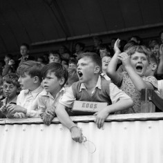 Children cheer in the stands