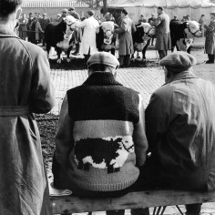 Man wears an appropriate cardigan to the Hereford Bull sale